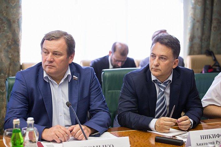 В Совете Федерации состоялось заседание Комитета общественной поддержки жителей Юго-Востока Украины-13