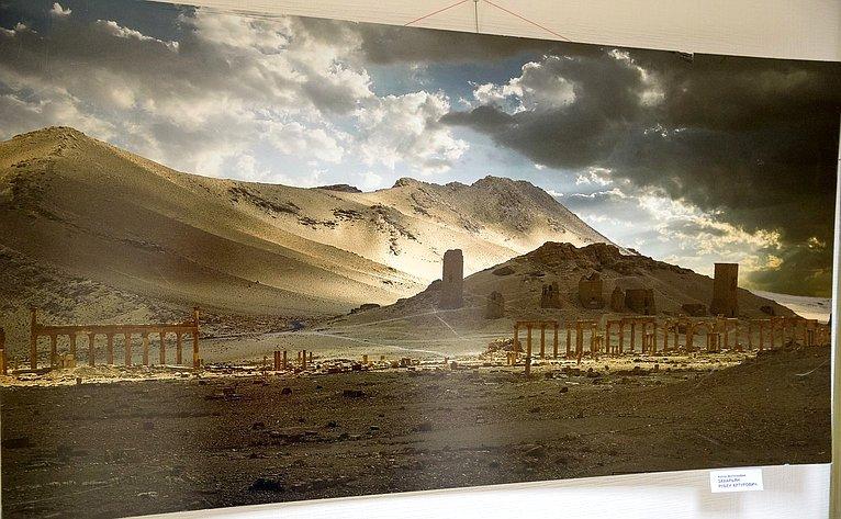 Открытие фотовыставки «Сохраним Пальмиру вместе»