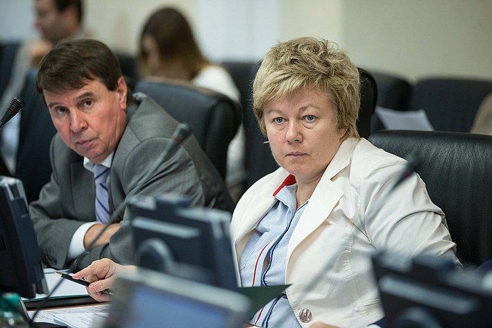 Заседание Комитета Совета Федерации по международным делам Тимофеева