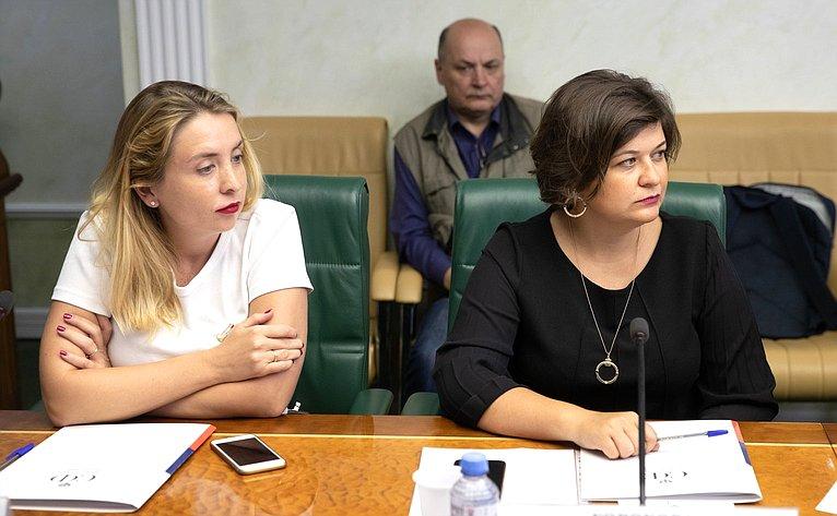Заседание рабочей группы Временной комиссии Совета Федерации позащите государственного суверенитета ипредотвращению вмешательства вовнутренние дела РФ