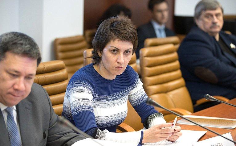 Заседание группы посотрудничеству Совета Федерации сКнессетом Государства Израиль