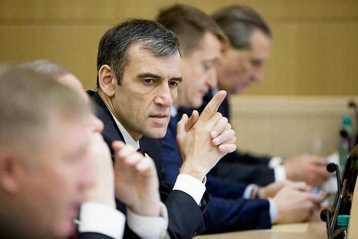 Н. Власенко 371-е заседание Совета Федерации