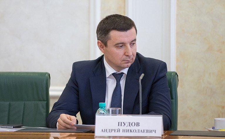 Пудов Андрей Николаевич