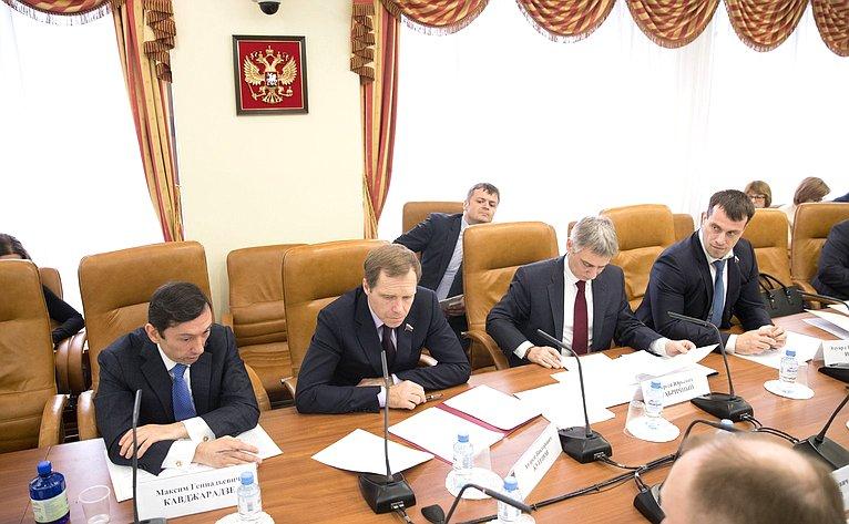 Заседание рабочей группы, посвященное вопросам совершенствования правового регулирования регистрации границ между субъектами Российской Федерации