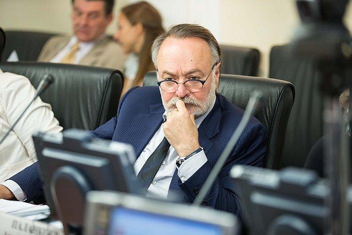 Заседание Комитета Совета Федерации по международным делам Тотоонов