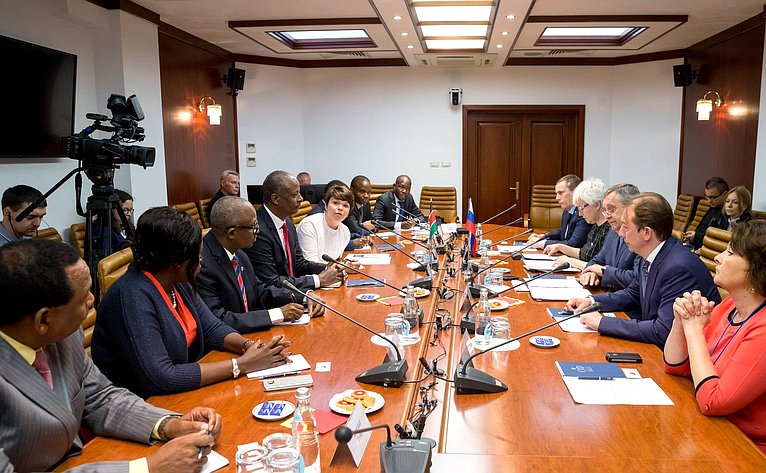 Встреча О. Тимофеевой счленом Комитета Национального собрания Кении пообороне имеждународным делам Дидо Али Рассо