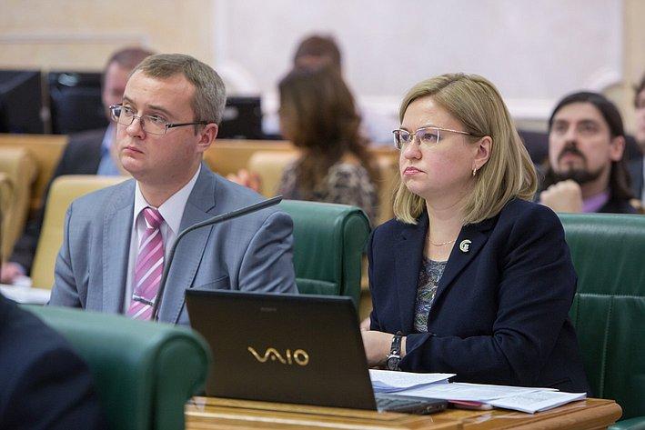 Заседание Комитета СФ по конституционному законодательству и государственному строительству