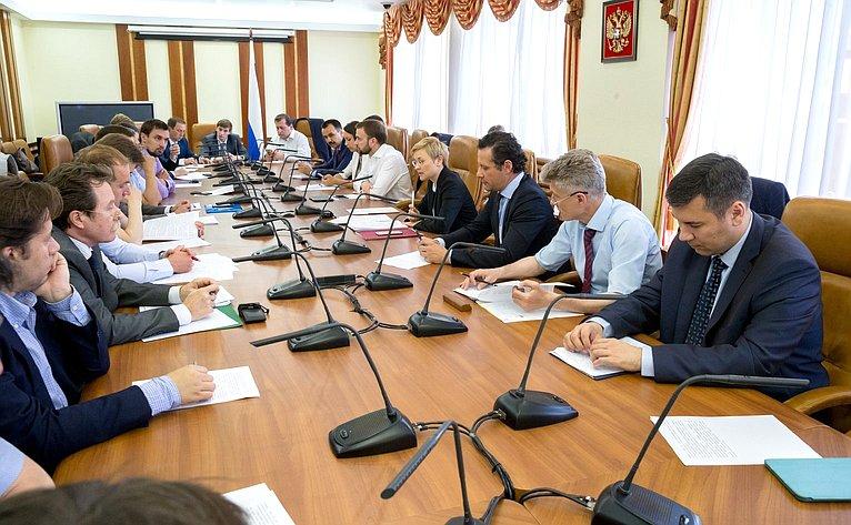 Л. Бокова провела заседание Временной комиссии СФ поразвитию информационного общества