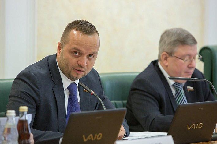 К. Добрынин Заседание Комитета СФ по конституционному законодательству и государственному строительству