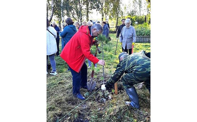 Александр Ракитин принял участие вакции «Сад памяти», которую организуют «Волонтеры Победы»
