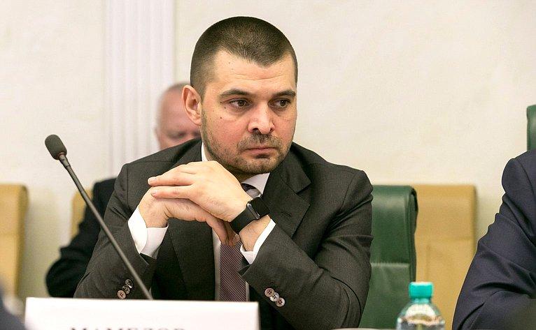 С. Мамедов назаседании Комитета поддержки жителей Юго-Востока Украины