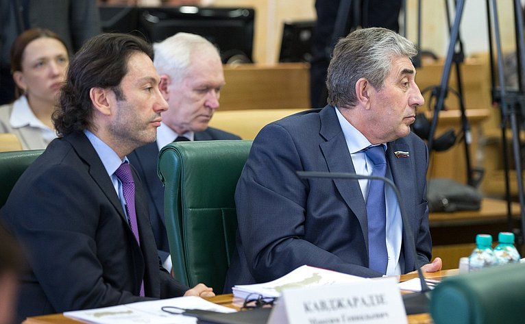 М. Кавджарадзе назаседании Президиума Совета Законодателей