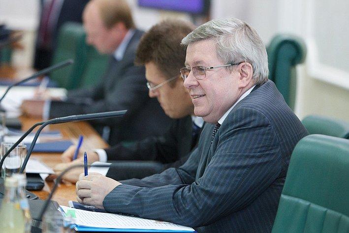 Парламентские слушания по культуре-27 торшин