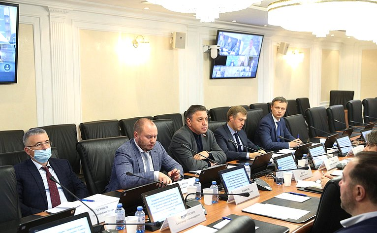 Заседание секции «Цифровизация государственного управления» Совета поразвитию цифровой экономики при СФ