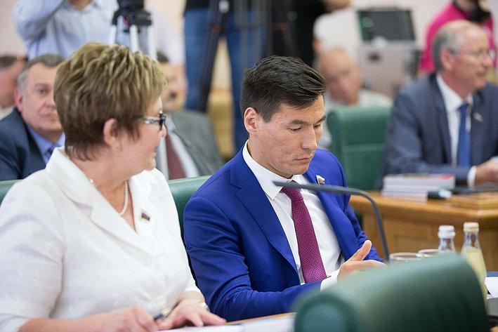 Парламентские слушания по культуре-4 Николаева и Хасиков