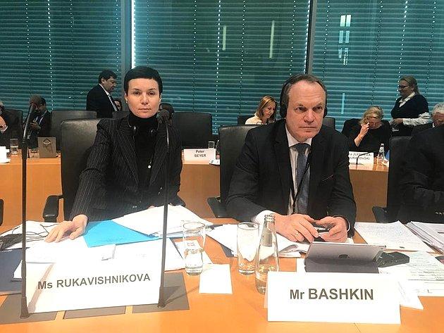 Представители делегации Совета Федерации Ирина Рукавишникова иАлександр Башкин назаседании комиссий ПАСЕ