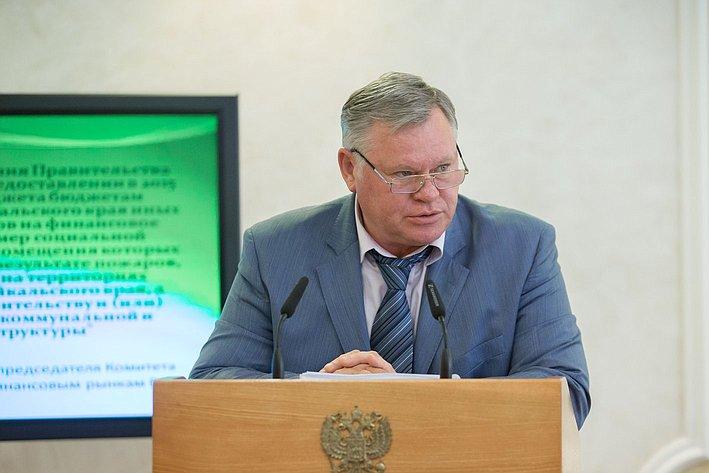 В. Петров Заседание Комитета СФ по бюджету и финансовым рынкам