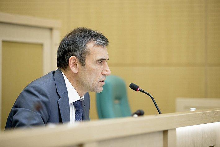 Власенко 380-е заседание Совета Федерации