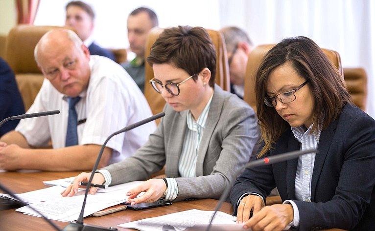Заседание Временной комиссии поразвитию информационного общества
