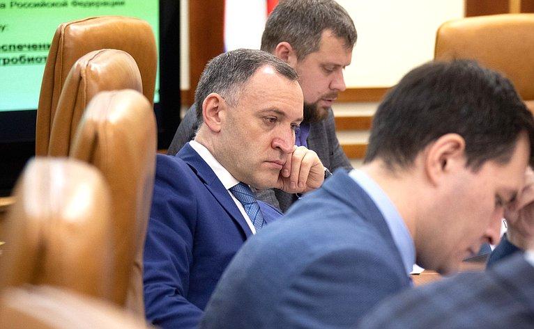 Заседание Временной комиссии СФ повопросам законодательного обеспечения развития технико-технологической базы агропромышленного комплекса РФ