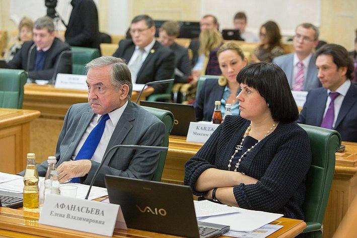 Е. Афанасьева Заседание Комитета СФ по конституционному законодательству и государственному строительству