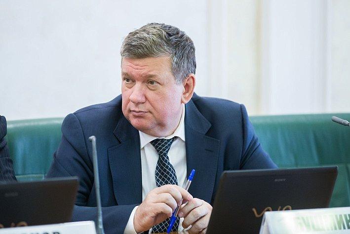 Е. бушмин Заседание Комитета СФ по бюджету и финансовым рынкам