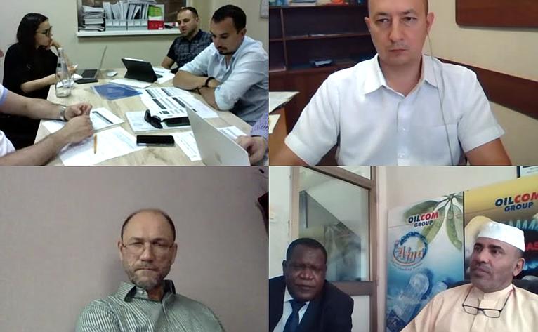 Владимир Лакунин принял участие вмеждународной онлайн-конференции спредставителями бизнес-сообществ России иРеспублики Танзания
