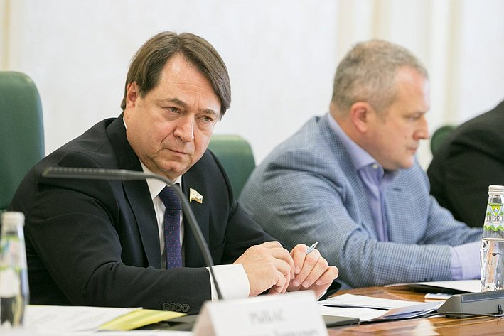 Шатиров. Заседание Комитета СФ поэкономической политике