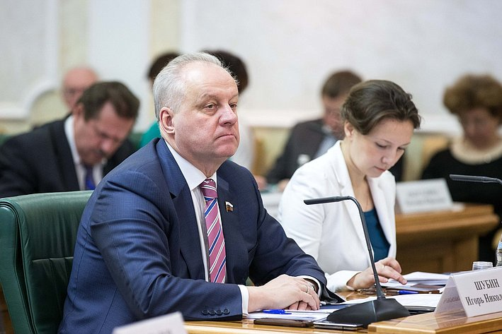 Шубин. Заседание Совета по местному самоуправлению при верхней палате парламента