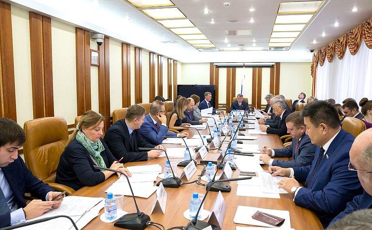 Совещание Комитета СФ пообороне ибезопасности повопросам законодательного обеспечения противодействию нелегальной миграции