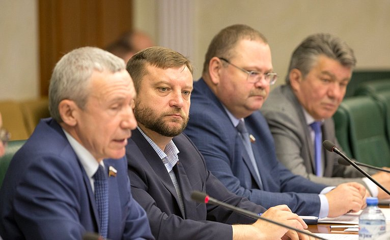 Заседание Временной комиссии СФ позащите гос. суверенитета ипредотвращению вмешательства вовнутренние дела РФ
