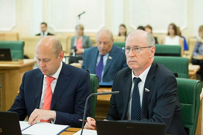 Н. Петрушкин Заседание Комитета СФ по бюджету и финансовым рынкам