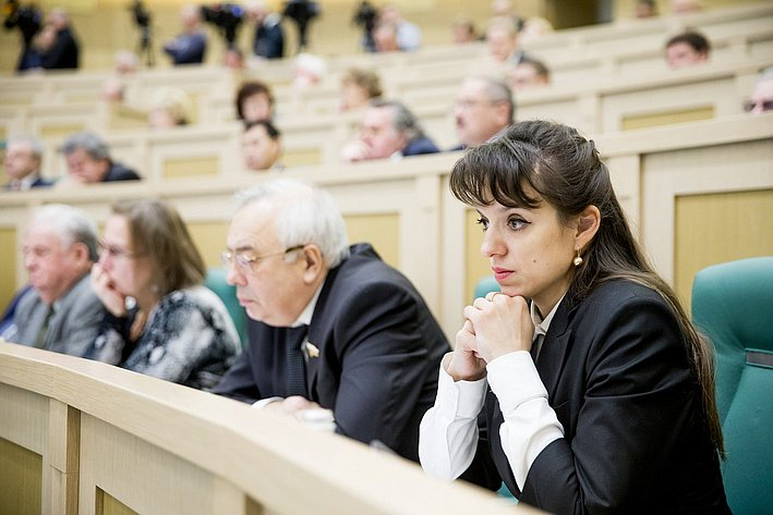 24.11.2014 Парламентские слушания Вепринцева Юлия Владимировна
