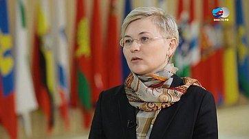 Л. Бокова обэлектронных визах для иностранных граждан