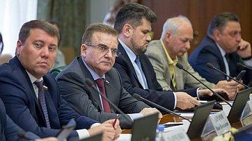 Заседание Комитета СФ поэкономической политике. Запись трансляции от9июля 2019года