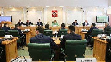 Выступление Валентины Матвиенко назаседании Научно-экспертного совета при Председателе Совета Федерации