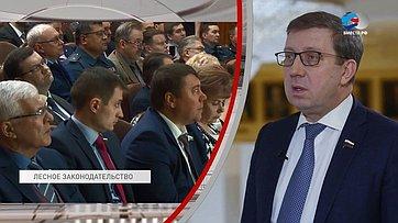 А. Майоров обитогах заседания рабочей группы посовершенствованию лесного законодательства
