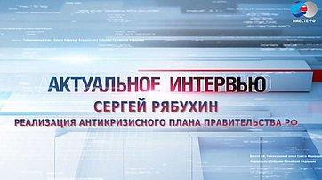 С. Рябухин о реализации антикризисного плана правительства РФ