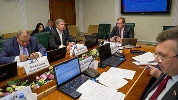 Заседание Комитета СФ поэкономической политике. Запись трансляции от25июля 2019года