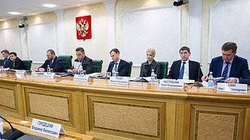 Заседание Совета поместному самоуправлению при СФ. Запись трансляции от5ноября 2019года