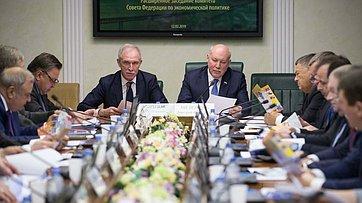 Расширенное заседание Комитета СФ поэкономической политике. Запись трансляции от12февраля 2019года