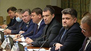 Заседание Комитета СФ поэкономической политике. Запись трансляции от9февраля 2021года