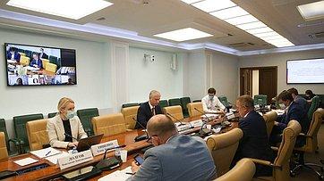 «Круглый стол» Комитета СФ поэкономической политике. Запись трансляции от30июня 2020года