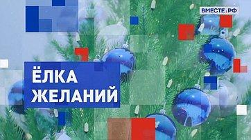 «Ёлка желаний». Подарок сенатора Ольги Епифановой